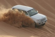 Bild Dubai Wüstensafari